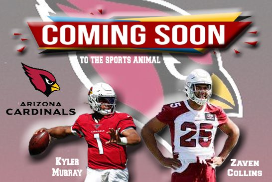 Coming to The Animal!