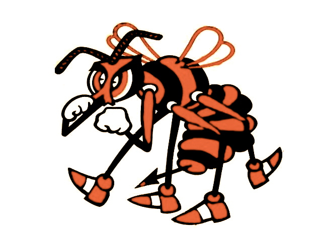Booker T Washington football